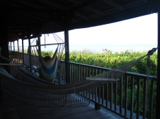 The hammocks on the second floor of La Esquina del Largo were surrounded by a marshy sanctuary filled with all sorts of wildlife.