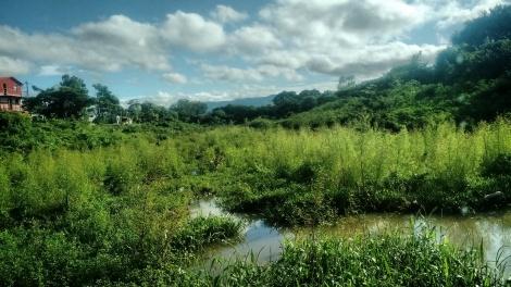 Bonus photo: The Esteli River #peacecorpsnicaragua #peacecorps #nofilter #mytown